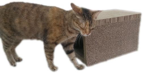 貓家BOXCAT抓板隧道玩樂組