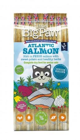 ☆國際貓家☆高齡貓無穀糧-大西洋鮭魚