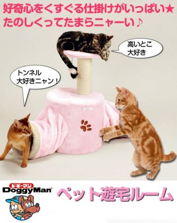 ★國際貓家★貓用-遊戲宅