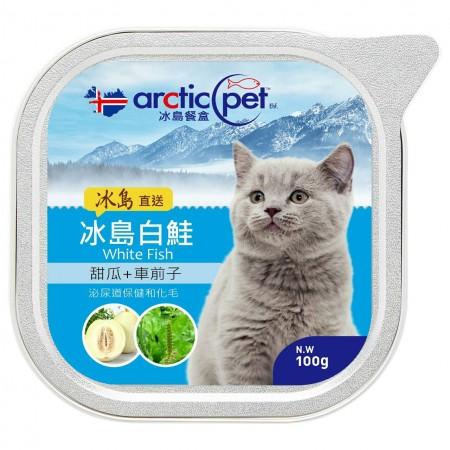☆國際貓家☆arcticpet 冰島貓餐盒-100G