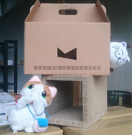 ☆國際貓家,經濟實惠享受玩樂☆{六月限定}喵喵限量分享禮盒組
