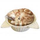 ★國際貓家★MARUKAN-日本可愛貓耳藤編透氣涼墊貓鍋