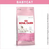 ★國際貓家★Royal Canin 皇家-離乳貓專用BC34(2KG/4KG/10KG)