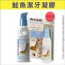 ★國際貓家★Petzlife 靈牙麗齒-天然潔牙凝膠(鮭魚口味)4oz