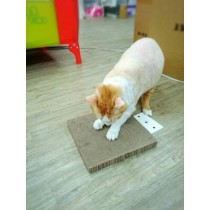 ☆國際貓家,貓咪磨爪功必殺好物☆貓家BOXCAT超耐磨貓抓板