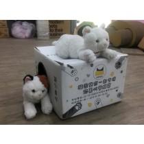 ☆省錢首選經濟組,國際貓家,讓貓咪遠離疾病的貓砂☆貓家BOXCAT紅標100%無塵貓細沙9小盒經濟組24L