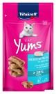☆國際貓家☆德國 Vitakraft  Cat Yums 魚香堡